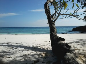 Trauminsel Tachai - Robinsoninsel