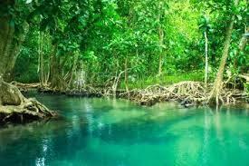 Khlong Song Nam