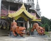 Tigertempel Wat Tham Sua